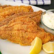 Fried catfish filets with tartar sauce